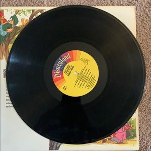 Vintage Robin Hood Record